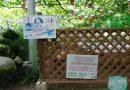 《 月薪嬌妻 ( 逃避雖可恥但有用 )》 新垣結衣 和 星野源 採葡萄就在這! 「 金櫻園 」聖地巡禮